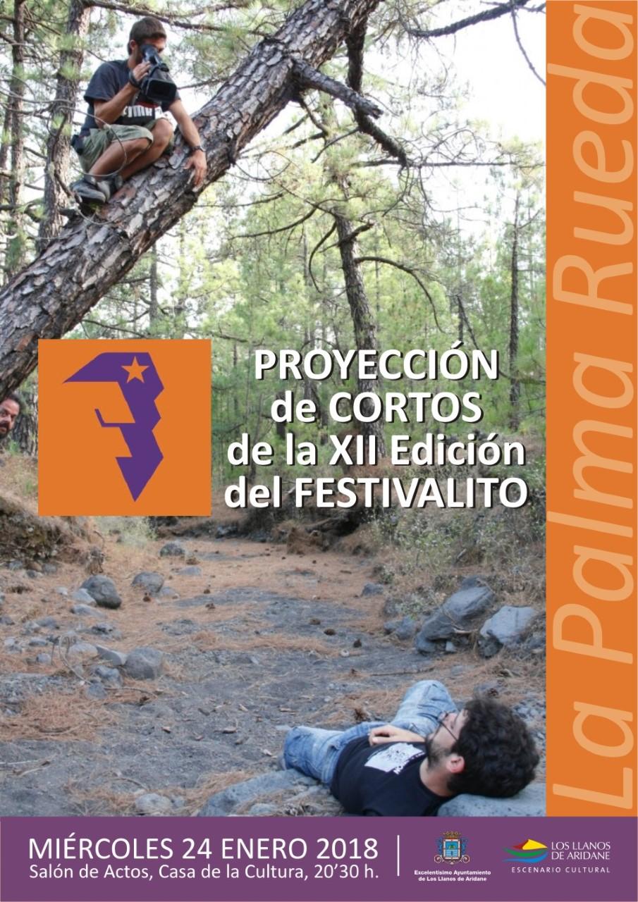 Cartel24.01.18_ProyeccionLPR2017LosLlanosdeAridane